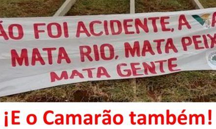 Masacre en Brasil: A 272 personas la VALE les quitó la vida