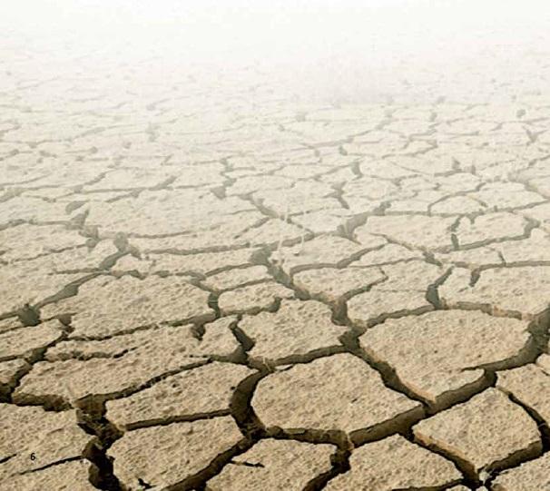 Alternativas al desarrollo. La destrucción del planeta no es un destíno