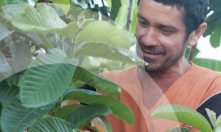 Financiarización de la Biodiversidad. Documento posición de Amigos de la Tierra Internacional