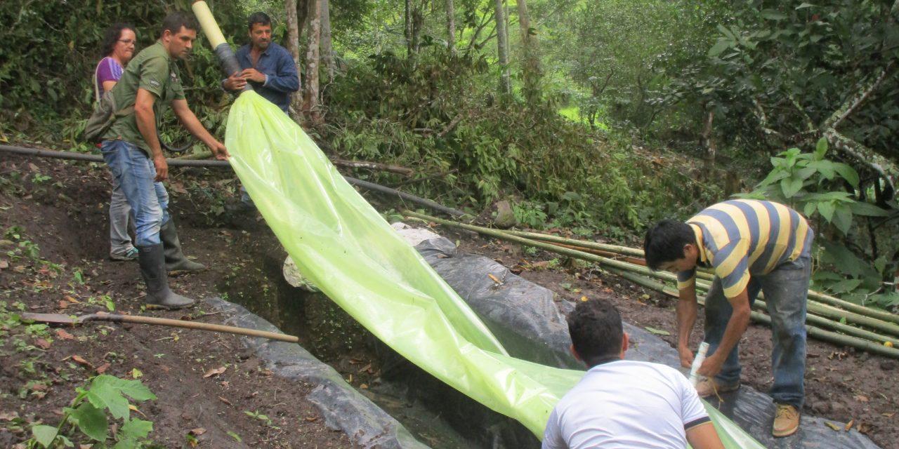 Energía de la Biomasa: Uso de biodigestores en una reserva campesina, articulado al procesamiento comunitario de alimentos