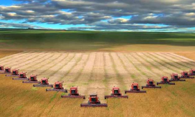 Crisis climática y modelo agroindustrial de déficit energético: el futuro post-fósil está en los intersticios